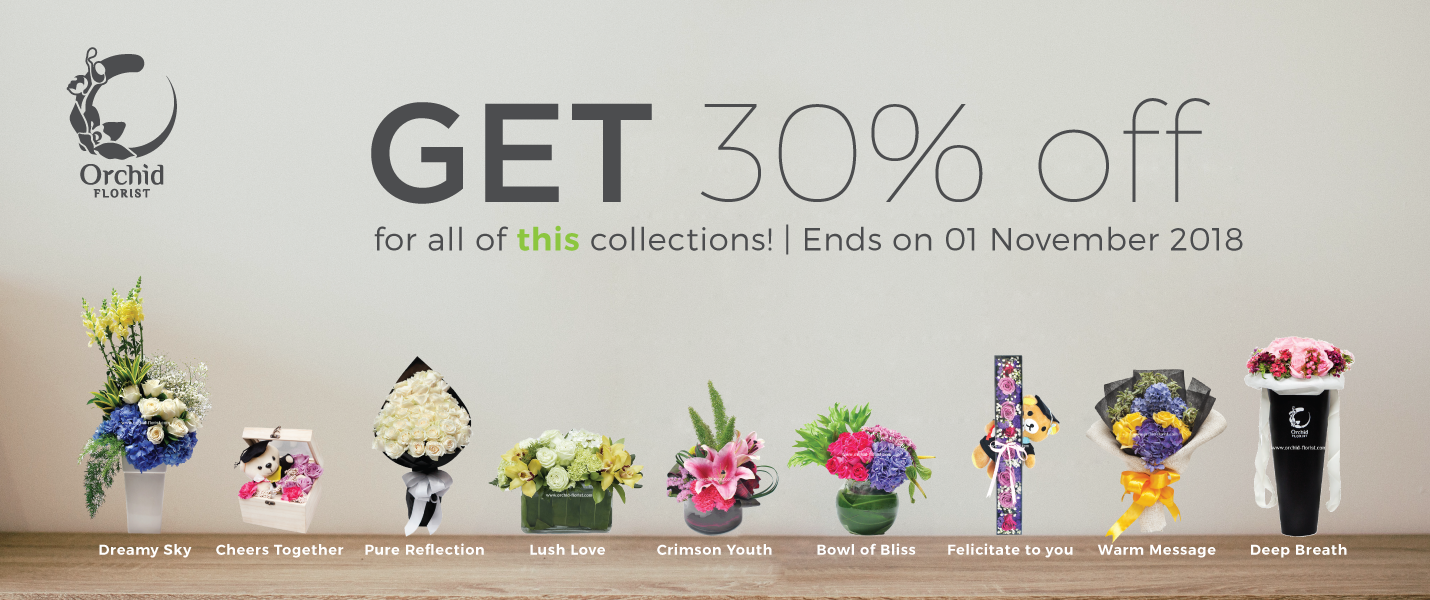GET 30% OFF FOR THIS COLLECTIONS